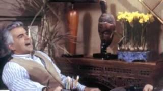 Larry David, Seinfeld and J. Peterman
