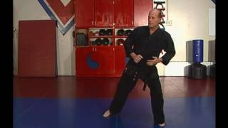 Steve Sexton Hapkido Volume 1 of 3