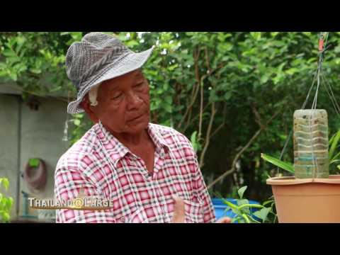 Thailand@Large Episode: Think Different and Be Creative at Sriya Garden