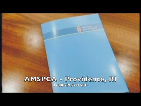 AMSPCA - Low Yield 2017