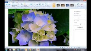 Windows Live Photo Gallery Part 2