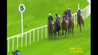 Roderic O'Connor - Irish 2,000 Guineas 2011