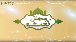 Mehfil e Naat Episode 377 – محفلِ نعت – Grand Mefhil e Milad – Madani Channel