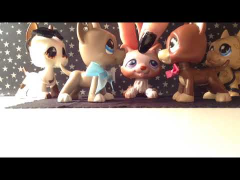 Lps: In Love With A Killer Wedding