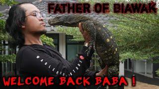 BABA SANG PENAKLUK BIAWAK WELCOME BACK !
