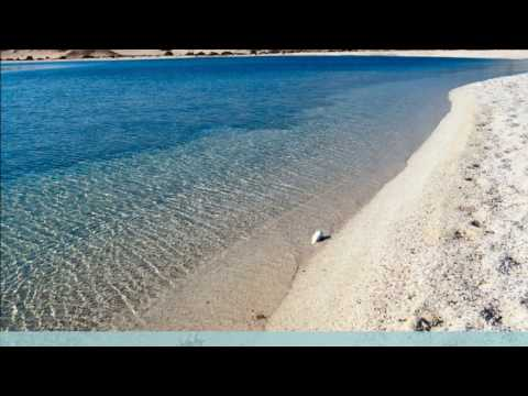 Marsa Alam Excursions and Day Tours - Shaspo Tours