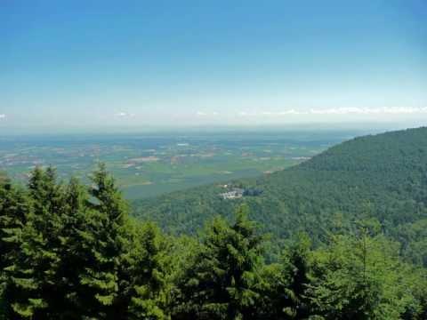 Mont Ste Odile 270611