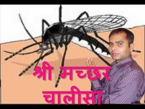 Shri machchar chalisa by Brij Tomar.wmv