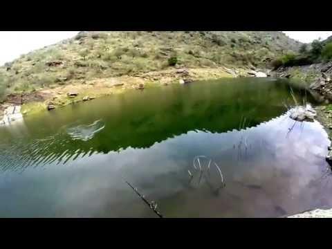Bass Fishing Portugal Takatoshi Murase