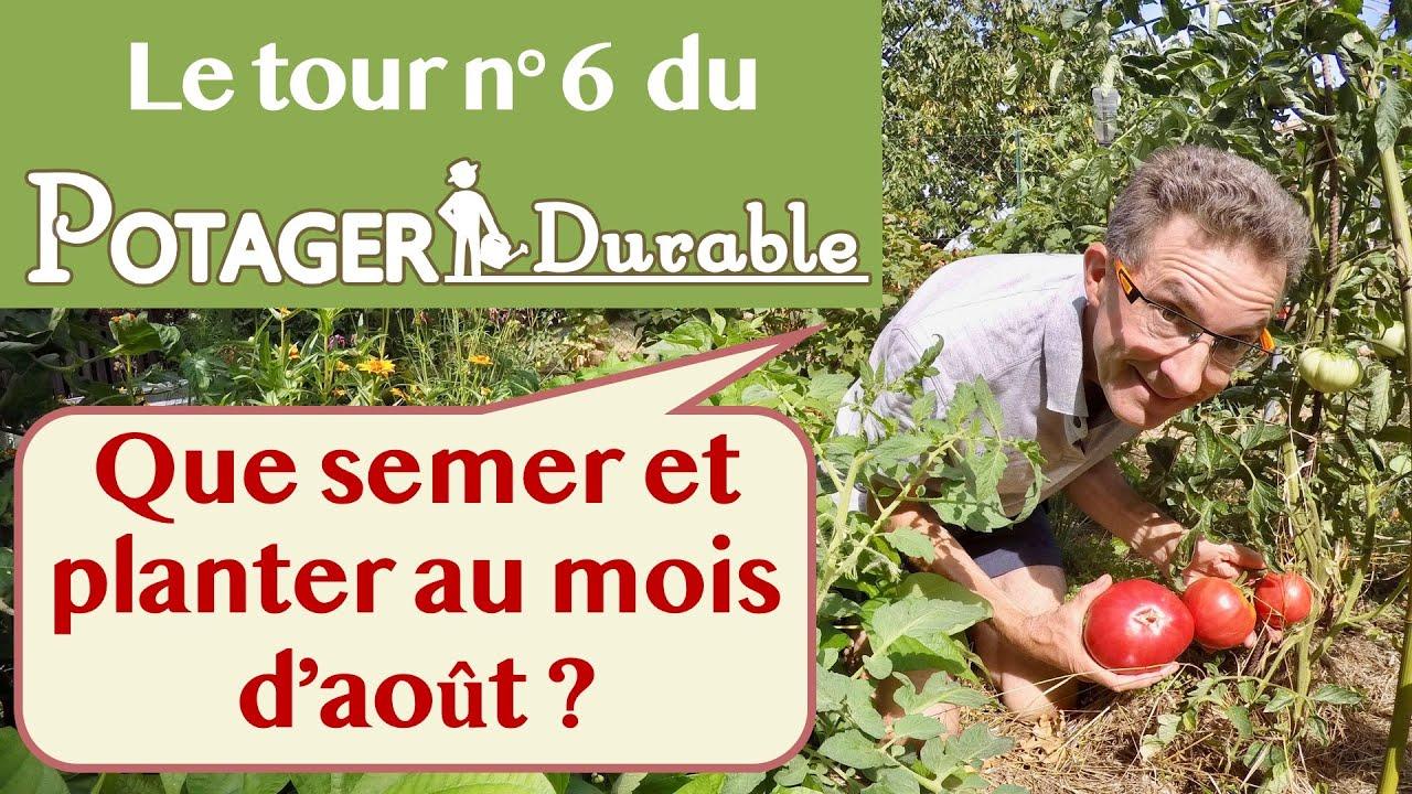 Quoi Mettre Au Potager En Septembre que semer et planter au mois d'août au potager ?