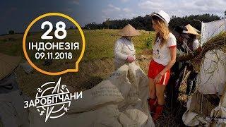Заробітчани - Индонезия- Выпуск 28 - 10.11.2018