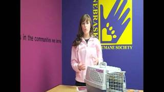 Dogs & Puppies 101 - Potty/Crate training