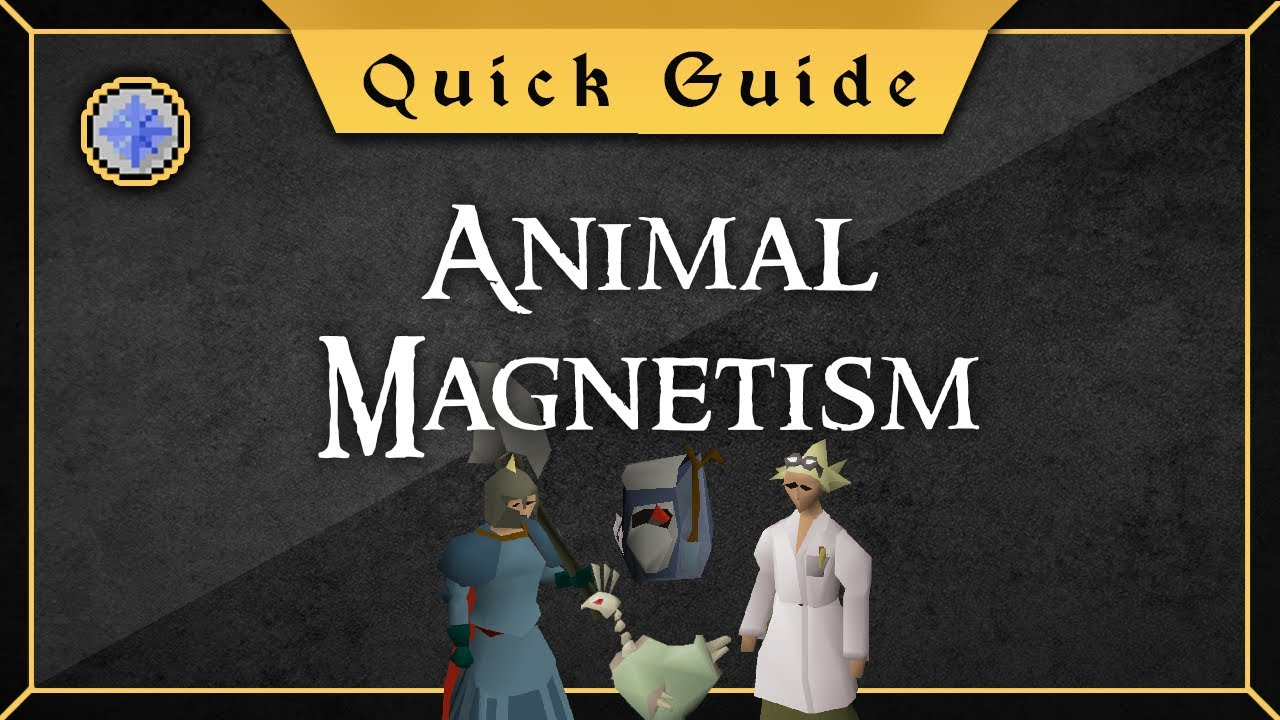 Quick Guide Animal Magnetism Youtube Check out our animal magnetism selection for the very best in unique or custom, handmade pieces from our shops. quick guide animal magnetism