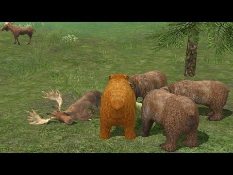 Wild Bear Simulator 3D Android Gameplay #6