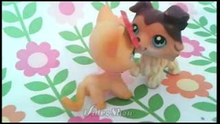 Lps write your story on my heart (for Sophiegtv)