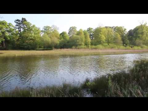 Yorkshire sculpture park Wakefield England canon 600d video