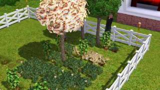 The sims 3 Money Tree