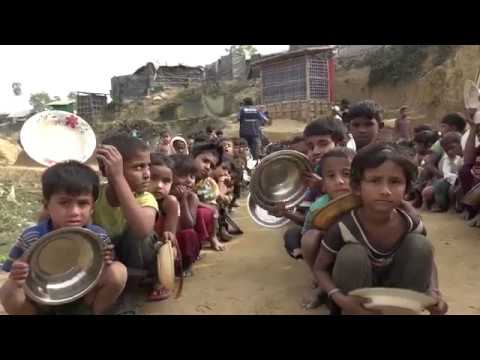 Supporting health of Rohingya in Bangladesh: One year on