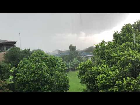 Tropischer Regen Java Bogor - Concierge Gerry Jakarta Tourism
