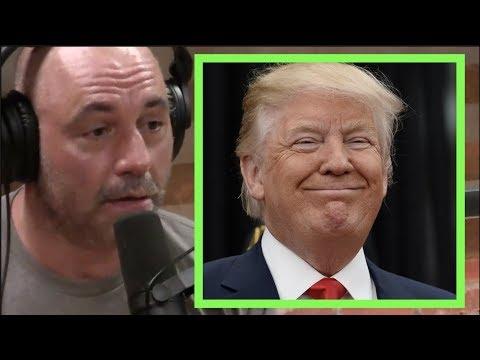 Joe Rogan - Donald Trump is Gonna Win Again Because of Crazy Progressives