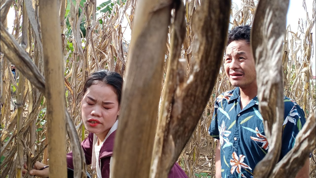 Hmong new movies Am nkaub new movies 2018 funny - YouTube |Hmong Movie