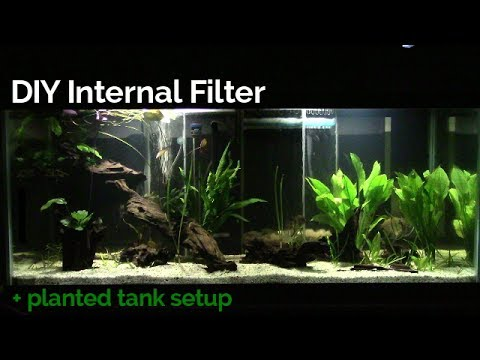 DIY Internal Filter + planted tank setup