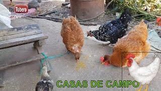 Como son las Casas en el Campo Salvadoreño, Youtubero Salvadoreño, svl sv YS
