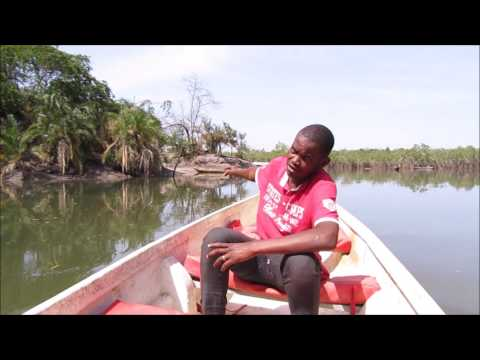 Trip to Makasutu Cultural Forest, The Gambia