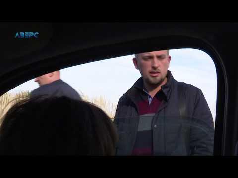 ТРК Аверс: Криваві ріки у Володимирі: Птахофабрика поставила охорону на стоки нечистот