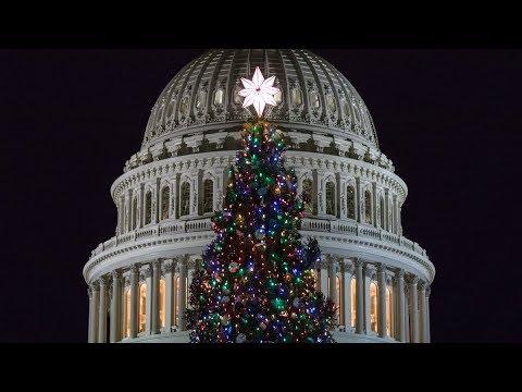 2017 U.S. Capitol Christmas Tree Lighting Ceremony