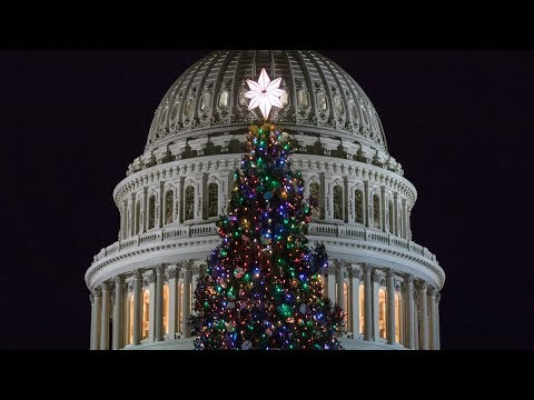 Capitol Christmas Tree.2017 U S Capitol Christmas Tree Lighting Ceremony