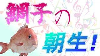 【鯛子の朝生】謎の釣りゲーを制す🐟