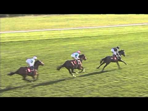 Frank Whittle Partnership Condition Stakes, Doncaster
