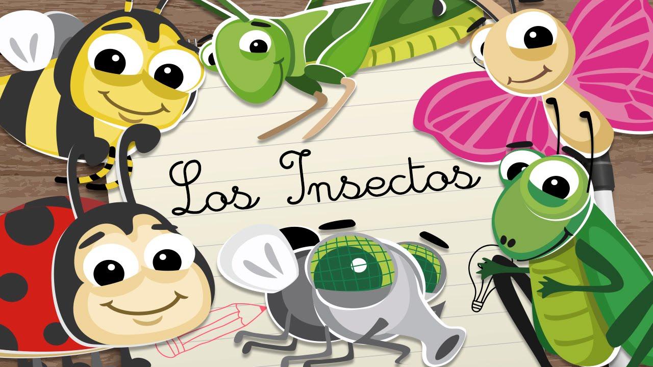 INSECTOS en ESPAÑOL para niños – Vídeos educativos para niños - YouTube