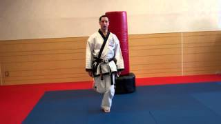 Warren Levi Karate- Ushiro Geri (Back Kick) Instructional