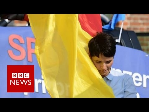 Is Germany's AFD racist? BBC News