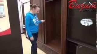 Шкаф-купе Палермо(Шкаф-купе Палермо, видеосъемка производилась в дисконт-центре мебельной сети