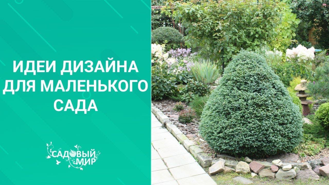 Идеи дизайна для маленького сада