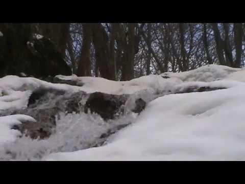 Cascada Borzești. Iarna. (nature mood)