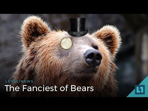L1 News (Security etc): The Fanciest of Bears  -- 2018-03-07
