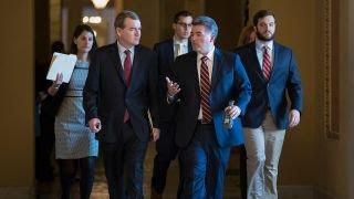 Senate blocks immigration bill backed by Trump administration