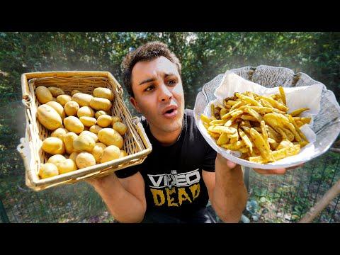 je-rÉcolte-mes-frites-dans-la-nature-!-(2020)