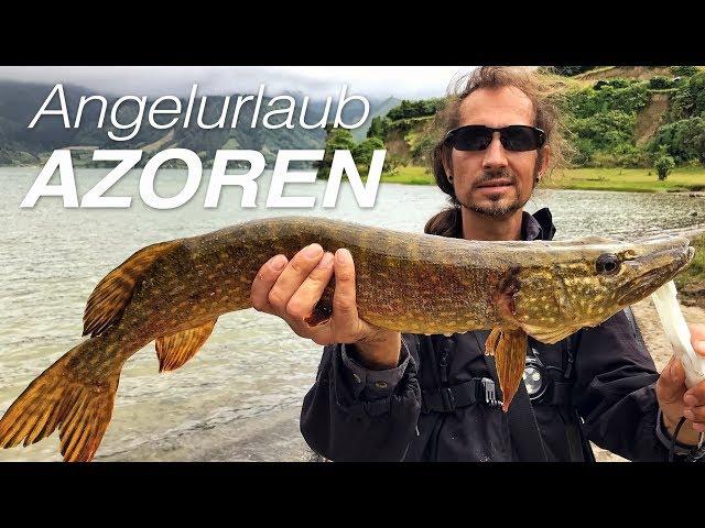 AZOREN - São Miquel - Angelurlaub auf Hecht, Barrakuda und Bluefish