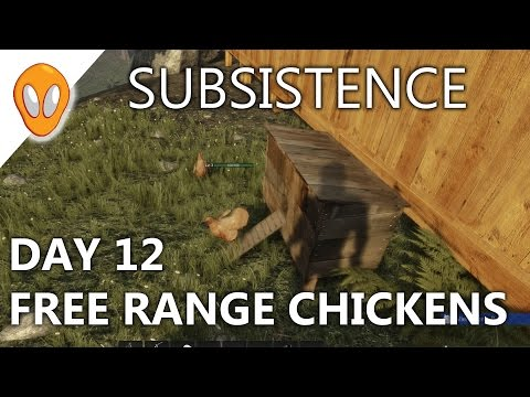 DAY 12   FREE RANGE CHICKENS   SUBSISTENCE GAMEPLAY
