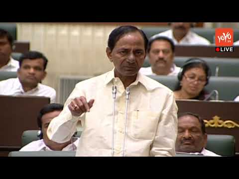 CM KCR Speech On Agriculture & Minimum Support price For Cotton | TS Assembly Sessions | YOYO NEWS24