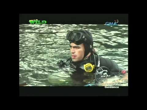 Born to be Wild Diver's Network, Cave Diving EPISODE 1
