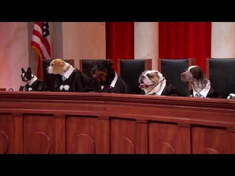 Kloeckner v Solis: Oral Argument - October 02, 2012