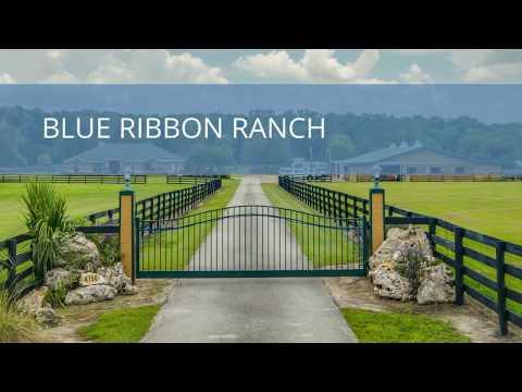 Blue Ribbon Ranch 4750 NW 120th St Reddick, FL 32686 Horse Farm for Sale