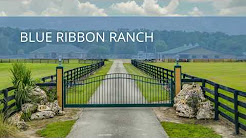 Blue Ribbon Ranch 4750 NW 120th St Reddick, FL 32686 Horse Farm for Sale