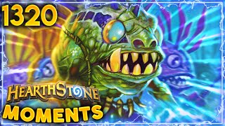 MURLOCS ARE THE REAL HEROES Of Battlegrounds | Hearthstone Daily Moments + Battlegrounds Ep.1320